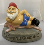 I Am Sexy and I Gnome IT